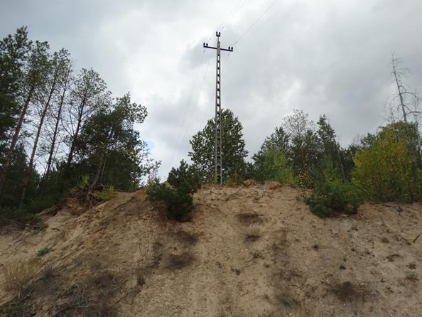 Wyrobisko, w którym prowadzone nielegalne prace wydobywcze spowodowały zagrożenie dla linii średniego napięcia (powiat hajnowski).