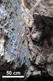Powleczenia minerałami miedzi: azurytem i malachitem na powierzchni lustra tektonicznego w kamieniołomie zachodnim na Miedziance
